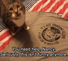 Time for Kitty to stage and intervention.......