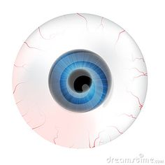 Image Of Realistic Human Eye Ball With Colorful Pupil, Iris. Vector Illustration Isolated On White Background. - Download From Over 36 Million High Quality Stock Photos, Images, Vectors. Sign up for FREE today. Image: 59737273