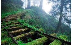 abandoned trail