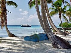 A Secluded Tropical Island, with a Cabana and White Sandy Beaches!