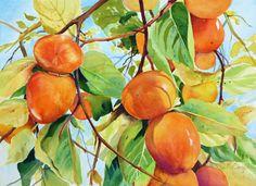 Catherine McCargar, California Persimmons, watercolor. http://cmccargarwatercolor.blogspot.com/