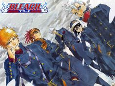 awesome Bleach Anime Wallpaper (135)