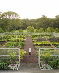 Martha Stewart's garden and my dream vegetable garden.
