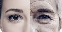 The global anti-aging market will be worth nearly $200 billion in 2019. New beauty technologies make anti-aging products big business. But what about the possibility of anti-aging treatments for the health of our body, and not just the surface of...  Read more