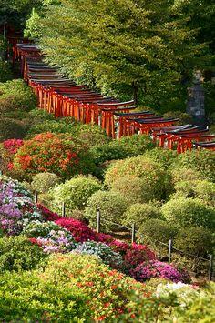 Nezu-jinja Shrine, Tokyo, Japan http://www.jnto.go.jp/eng/location/spot/shritemp/nezujinja.html