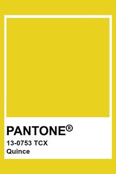 PANTONE 14-0745 TCX Incaberry #pantone #color #yellow Colour Pallete, Color Combos, Color Schemes, Pantone Colour Palettes, Pantone Color, Carta Pantone, Pantone Tcx, Tru Colors, Yellow Pantone