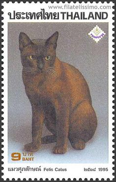 The domestic cat  (Felis catus or Felis silvestris catus),cat postage stamp from Thailand,circa 1995