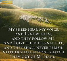 John 10:27-28. My sheep hear My voice...I know them...they follow Me...I give them eternal life.