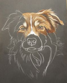 54 Dog Drawing Work With Crayon - Art Art Pastel, Pastel Drawing, Painting & Drawing, Drawing Step, Animal Paintings, Animal Drawings, Art Drawings, Pinturas Color Pastel, Border Collie Art
