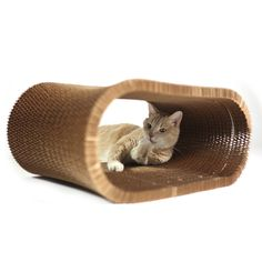KittyNest is an earth-friendly hangout for your cat that can be used as a home, bed, hideout, perch, treat holder, scratcher, and more.