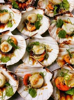Steamed scallops in the shell with ginger, soy, sesame oil and spring onions