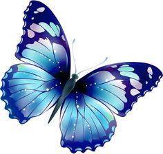 Butterflies butterfly clip art 2