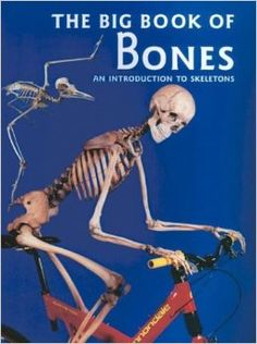 The Big Book of Bones: An awesome book to teach about all the different kinds of Skeletons!  From Human, to insect and crustaceans, to bird bones and reptiles.