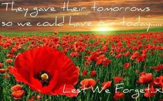 Rememberance Day..remember them all !!!