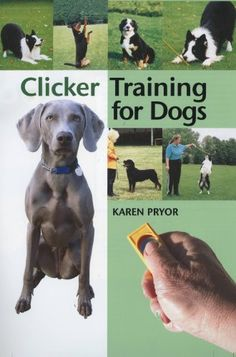 Clicker Training for Dogs: Positive reinforcement that works! by Karen Pryor http://www.amazon.co.uk/dp/1860542824/ref=cm_sw_r_pi_dp_IuNpwb19VD8BE
