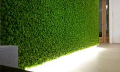 Stabilized #plant walls and #panels. No water, no sunlight, no soil, no leaves fall. #Vegetal range of approximately 50 stabilized #essences. Exclusively #handmade. #greenwalls #interior #design #architecture | Info: bit.ly/LinfaglamEN