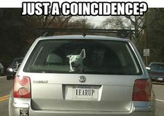 Coincidence? ...I THINK NOT!