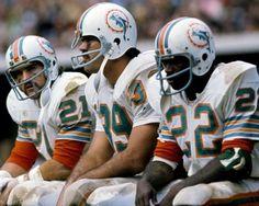 Nfl Football Players, Football Memes, School Football, Sport Football, 1972 Miami Dolphins, Dolphin Photos, American Football League, Nfl History, Football Conference