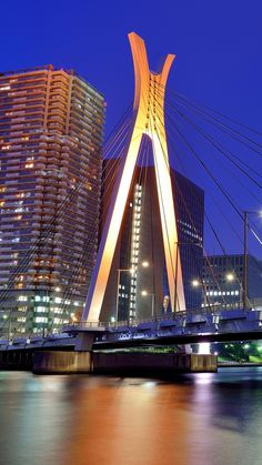 japan, tokyo, capital, metropolis, skyscrapers, houses, night, bridge, lights, river, blue, sky
