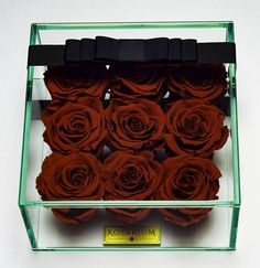 Items similar to 9 Rosarium RoseBox - Live Forver Roses on Etsy Beautiful Red Roses, Glass Boxes, Sunlight, Different Colors, Flower, Elegant, Simple, Natural, Water