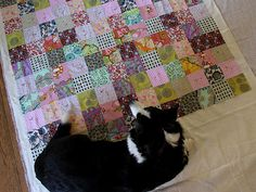 Squares quilt by Alicia Paulson (and Clover in the photo) - I think the contrasting colors, tones and size of prints are what make it so pretty