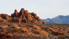 So much nature... so little time.  Snow Mountain State Park, near St. George, Utah.