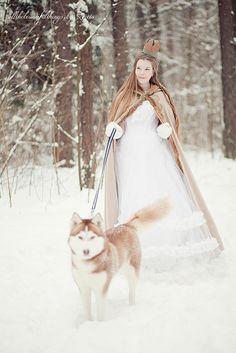 dama y lobo