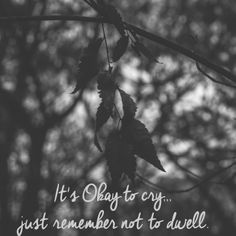 It's Okay to Cry, just remember not to dwell. Channel your negativity into positivity. #hfbphotography