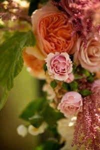 http://brds.vu/GBJQ2g  #flowers