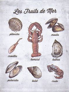 French Language Food Poster, Shell Fish, Les Fruits de Mer. $35.00, via Etsy.
