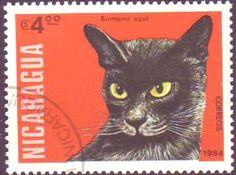 Cat stamp from Nicaragua, 1984