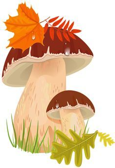 "Photo from album ""Грибы"" on Yandex. Autumn Painting, Autumn Art, Tole Painting, Autumn Theme, Autumn Leaves, Autumn Illustration, Cute Illustration, Fall Clip Art, Painted Rocks"