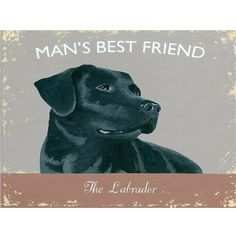 Mans Best Friend Labrador Dog Metal Sign | Pet Decor | RetroPlanet.com Salute the quintessential canine companion with this beautiful Labrador Man's Best Friend Tin Sign. Featuring a bold, black lab and weathered graphics, it's dignified home decor made just for dog lovers!