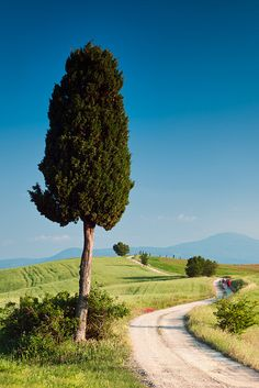 Farm Road Stroll: Pienza, Italy by Mike Blanchette
