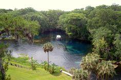 Silver Springs ~ Ocala, FL