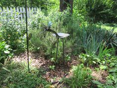Love my birdie garden ornament purchased at the Florence Alabama Arts Alive Festival last spring.  We have fed ravenous birds on the shovel/back throughout the winter.