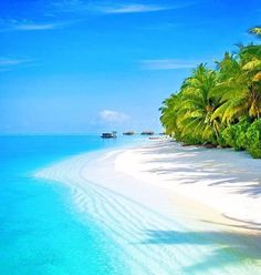 Find the best tropical honeymoon destinations ideas here and plan your ideal vacation. Beautiful Islands, Beautiful Beaches, Beautiful World, Beautiful Beach Pictures, Beautiful Ocean, Amazing Photos, Dream Vacations, Vacation Spots, Beach Vacations