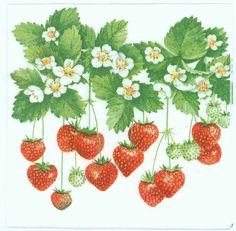 4 servilletas de decoupage  Fresas de verano  por Chiarotino