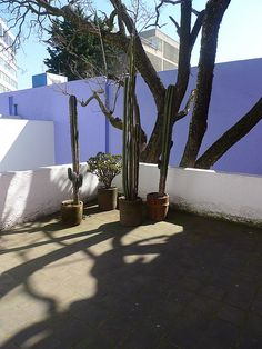 Luis Barragan's Casa Gilardi - on the roof