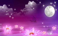 HD Night Of Dreams Wallpaper