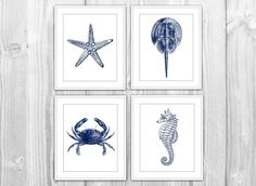 Navy Nautical Set of 4 Art Prints - Navy Blue & White Starfish, Crab, Seahorse - Modern Beach House Bathroom Decor