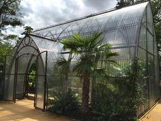 Gardening blog - garden design ideas, help & inspiration