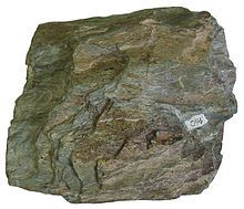 Green Schist Facies: chlorite, serpentine, and epidote, and platy minerals such as muscovite and platy serpentine, Other common minerals include quartz, orthoclase, talc, carbonate minerals and amphibole (actinolite).