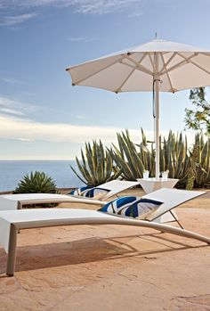 Clean lines anchored in marine-grade components. The Vista Umbrella is built to withstand even the most punishing climates, with an anodized aluminum frame. Modern Outdoor Living, Modern Outdoor Furniture, How To Clean Furniture, Outdoor Loungers, Outdoor Seating, Outdoor Rooms, Outdoor Decor, Pool Porch, Pergola Patio