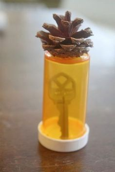 Hide your spare key in a medicine bottle with a piece of a pinecone glued to the end. Then bury it.
