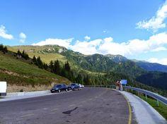 padina Romania, Beautiful Places, Country Roads, Album, Green, Card Book