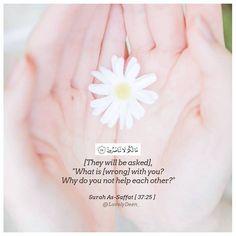 Muslim Quotes, Islamic Quotes, Ali Quotes, Qoutes, Mecca Kaaba, Oh Allah, Beautiful Rose Flowers, Quran Verses, Hadith