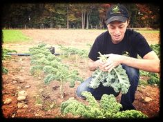 Brian of Rockland Roots harvesting some kale for one of his delicious healthy shakes