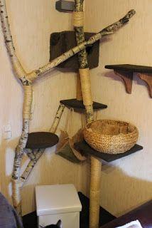kratzbaum selber bauen 67 ideen und bauanleitungen kratzbaum selber machen. Black Bedroom Furniture Sets. Home Design Ideas