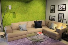 Vibrant green moss wall at Interior space.   Great contrast between the purple carpet and the green textured wall   Alp rug